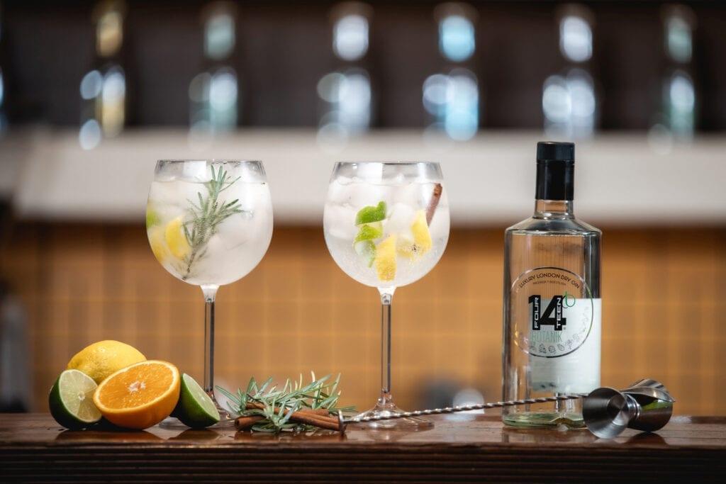 Gin tonik kozarec cimet rožmarin Gin Spot gin 14 Botanik